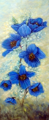<h5>Blue Poppies</h5><p>Oil on Canvas $275</p>