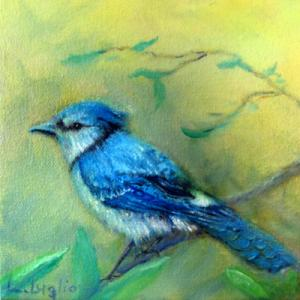 "Morning Blue Jay  -  Oil  -  6x6""  -  $100"