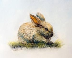 "Bunny  -  Pastel  -  9x12""  -  $200"