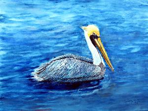 "Pelican  -  Watercolor  -  16x12""  -  $150"